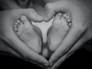 baby feet in heart shape hands - black and white image